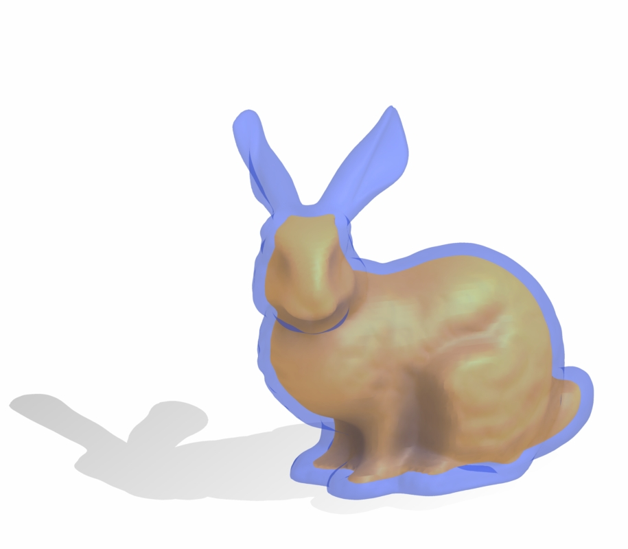 bunny with positive offset surface